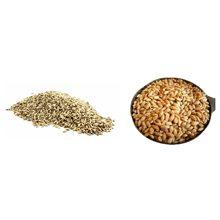 Рожь или пшеница — что более полезно?