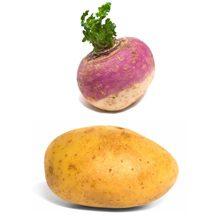 Что полезнее для организма репа или картофель