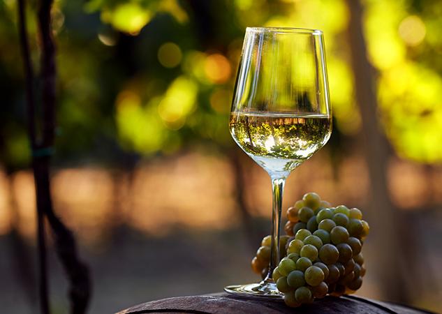 Белое вино