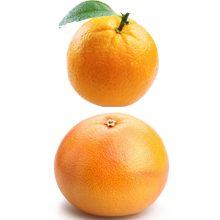 Какой фрукт полезнее апельсин или грейпфрут