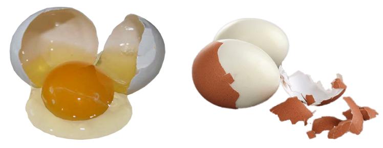 Сырые и вареные яйца