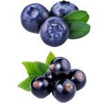 Что полезнее кушать чернику или черную смородину